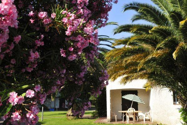 Facade - Village Vacances Domaine du Mas Blanc Alenya France Languedoc-Roussillon