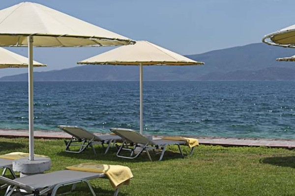 Plage - Hôtel Kalamaki Beach 4* Athenes Grece