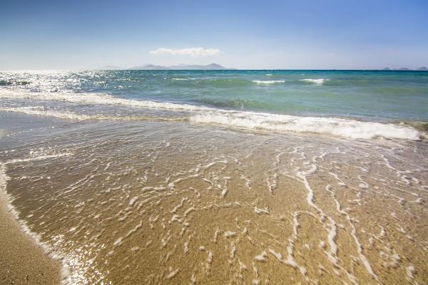 Plage - Hôtel Aeolos Beach 4* Kos Grece