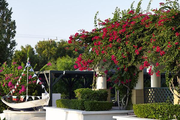 Autres - Hôtel Mitsis Rodos Maris Resort & Spa 5* Rhodes Grece
