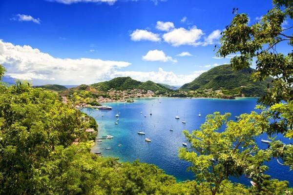 Nature - Hôtel Bwa Chik Hôtel & Golf 3* Pointe A Pitre Guadeloupe