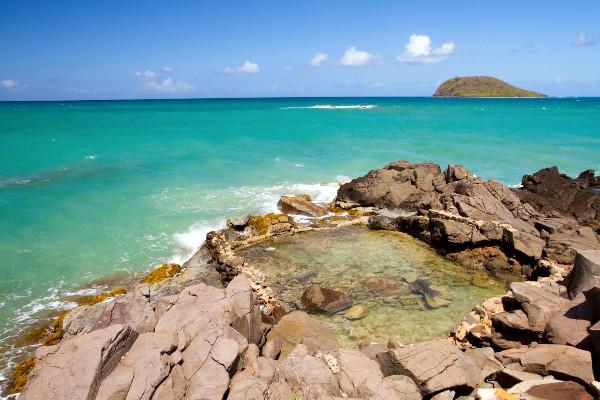 Nature - Résidence hôtelière Caraibes Bonheur