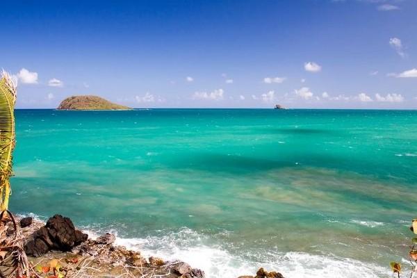 Nature - Résidence hôtelière Caraibes Royal 4* Pointe A Pitre Guadeloupe