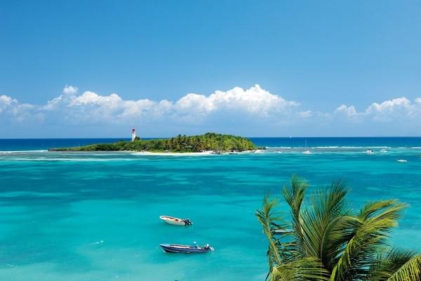 Nature - Résidence locative Villa Brind'Iles Pointe A Pitre Guadeloupe