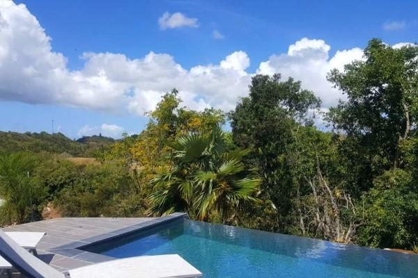 Piscine - Hôtel Villa Datura Pointe A Pitre Guadeloupe