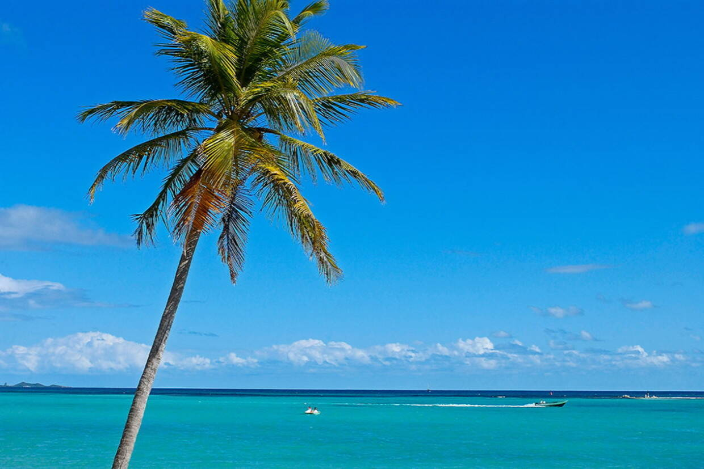 Plage - Bwa Chik & Golf 3* Pointe A Pitre Guadeloupe