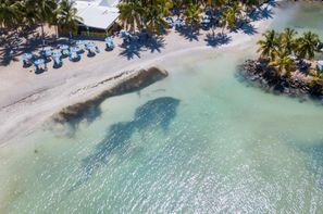 Vacances Gosier: Hôtel Canella Beach