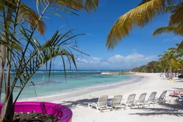 Plage - Pierre et Vacances Club Sainte-Anne 3* Pointe A Pitre Guadeloupe