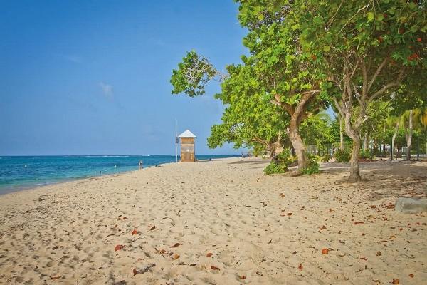 Plage - Hôtel Résidence Tropicale + Location Voiture Pointe A Pitre Guadeloupe