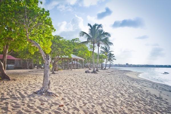 Plage - Hôtel Résidence Tropicale Pointe A Pitre Guadeloupe