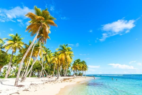 Plage - Hôtel Village Pierre et Vacances Sainte Anne Pointe A Pitre Guadeloupe
