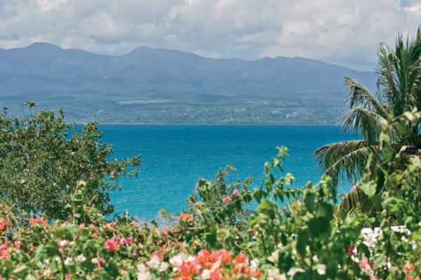 Nature - Hôtel Auberge De La Vieille Tour 4* Pointe A Pitre Guadeloupe