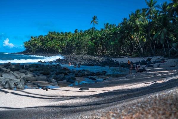 Nature - & Autotour Les incontournables Cayenne Guyane
