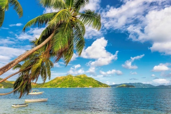 Vente flash Jamaique Club Club Coralia Royal Decameron Montego Beach 4*
