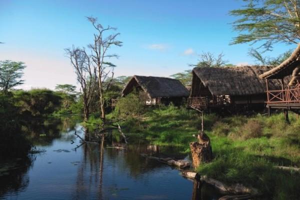 Autres - Hôtel Papillon Lagoon Reef 4* Mombasa Kenya