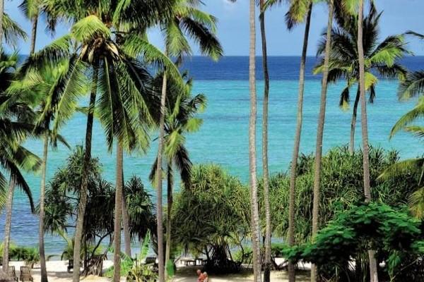 Plage - Hôtel Neptune Palm Beach Boutique Resort & Spa 4* Mombasa Kenya