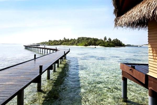 h tel adaaran hudhuran fushi atoll de male nord maldives. Black Bedroom Furniture Sets. Home Design Ideas