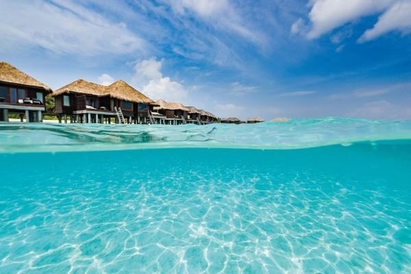 Nature - Hôtel Hôtel Sheraton Maldives Full Moon Resort & Spa 5* Male Maldives
