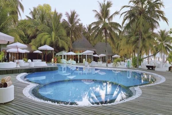 Piscine - Hôtel Kihaa Maldives 4* Male Maldives