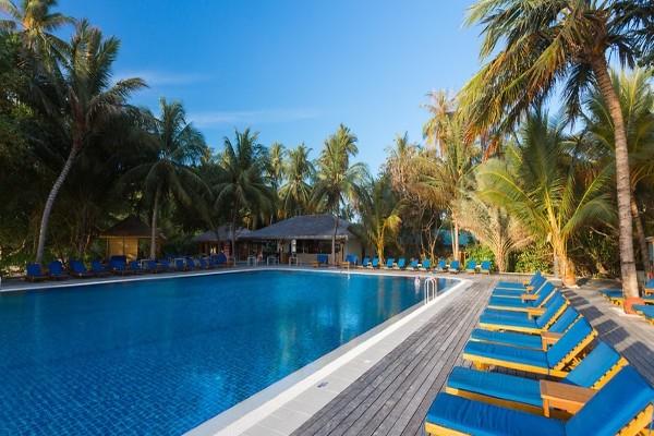 Piscine - Hôtel Meeru Island Resort & Spa 4* Male Maldives