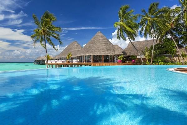 Piscine - Hôtel Sun Siyam Vilu Reef 5* Male Maldives
