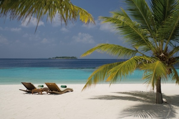 Plage - Hôtel Coco Palm Bodu Hithi 5* Male Maldives