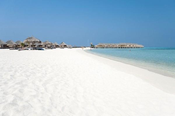 Plage - Hôtel Constance Moofushi Resort 5* Male Maldives