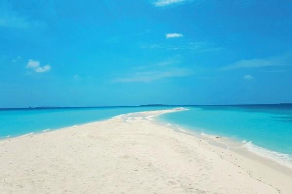 Plage - Hôtel Dhigali 5* Male Maldives