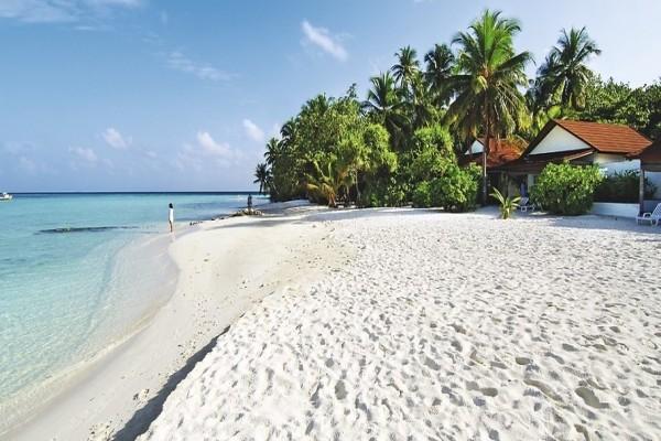 Plage - Hôtel Diamonds Athuruga Maldives 4* Male Maldives