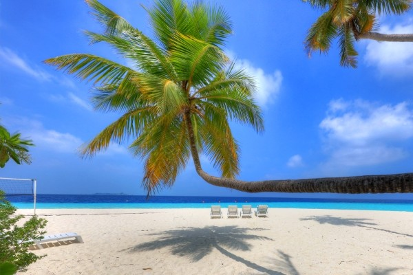 Plage - Fihalhohi Resort 3*Sup Male Maldives