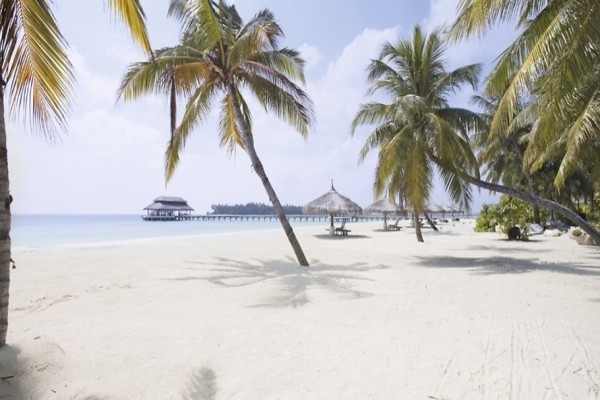 Plage - Hôtel Kihaa Maldives 4* Male Maldives