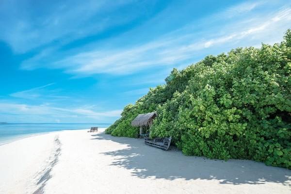 Plage - Hôtel Makunudu Island 3* Male Maldives