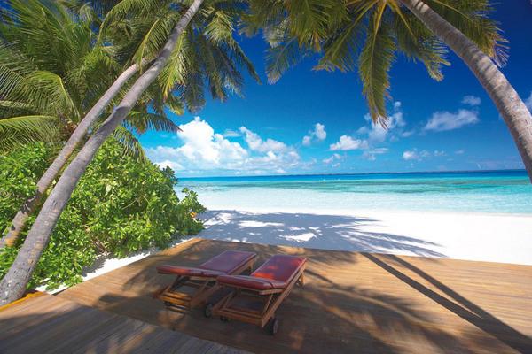 Plage - Medhufushi Island Resort