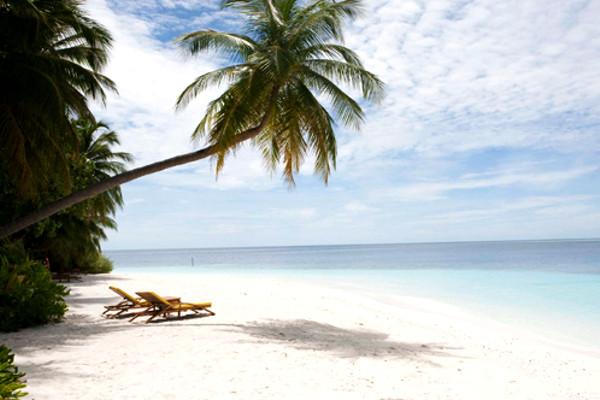 Plage - Hôtel Olhuveli Beach Resort & Spa 4* Male Maldives