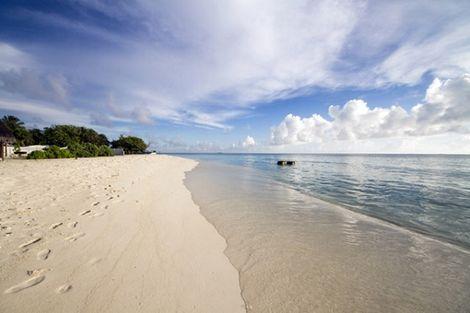 Maldives-Hôtel Tropic Tree 3*