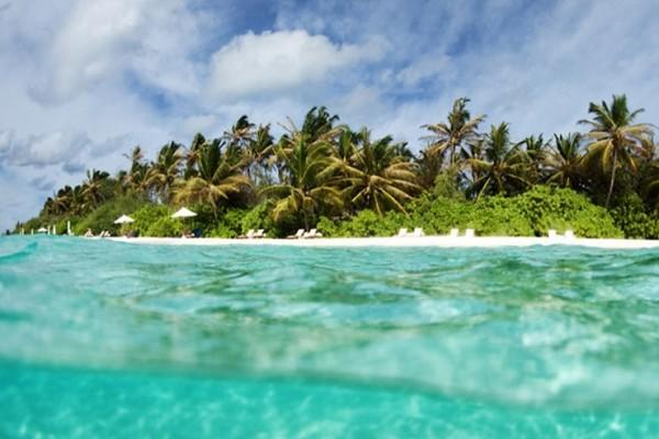 Plage - Hôtel Velassaru Maldives 5* Male Maldives
