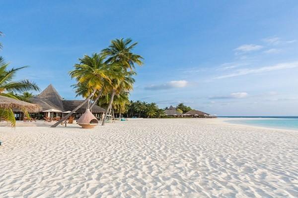 Plage - Hôtel Veligandu Island Resort & Spa 4* Male Maldives