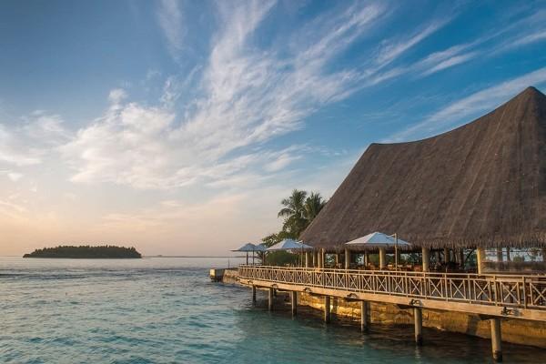 Restaurant - Hôtel Bandos Maldives 4* Male Maldives