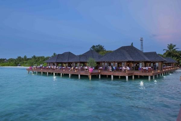Restaurant - Hôtel Olhuveli Beach Resort & Spa 4* Male Maldives