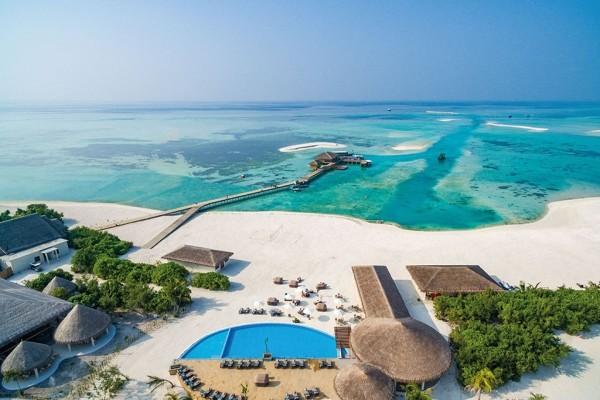 Vue panoramique - Cocoon