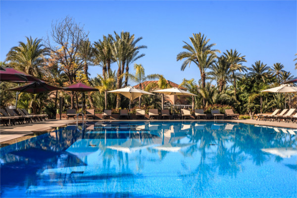 Piscine - Pullman Marrakech Palmeraie Resort And Spa Hotel 5*