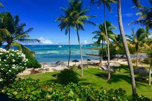 Vacances Le François: Hôtel Cap Est Lagoon Resort & Spa