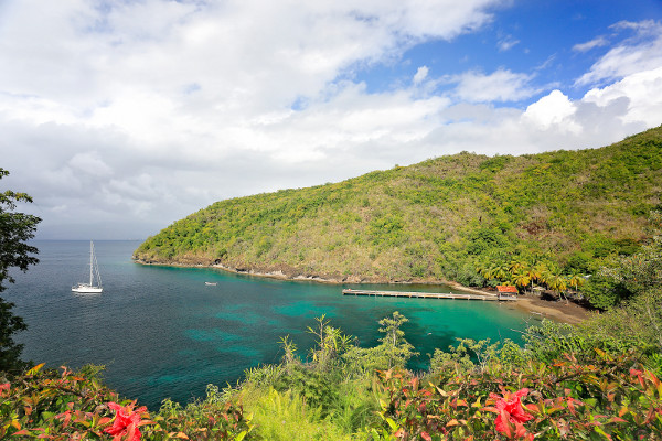 Nature - Villa Bleu Marine Fort De France Martinique