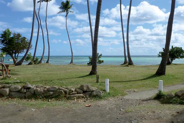 Nature - Résidence hôtelière Le Village De La Pointe