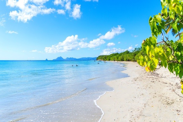 video Martinique