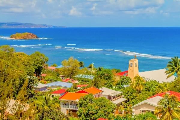 Nature - La Goelette Fort De France Martinique