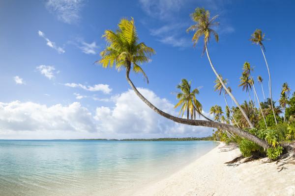 Vente flash Martinique Résidence Résidence Cayalines