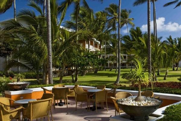 Bar - Hôtel Vik Arena Blanca 4* Punta Cana Republique Dominicaine