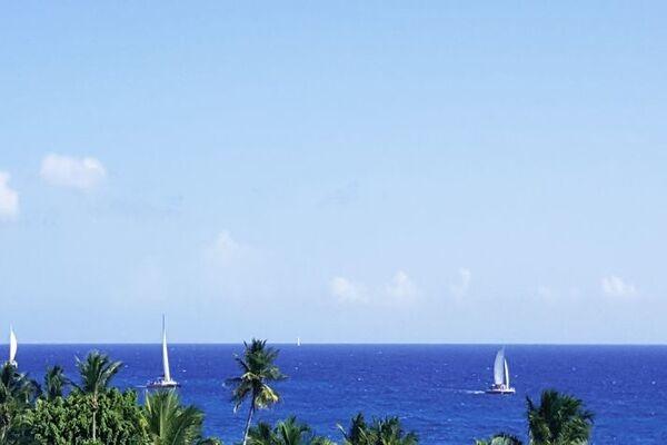 Nature - Hôtel Whala! Bayahibe 3* Punta Cana Republique Dominicaine