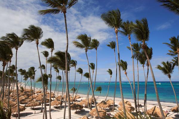 Plage - Hôtel The Reserve Paradisus Palma Real 5* Punta Cana Republique Dominicaine